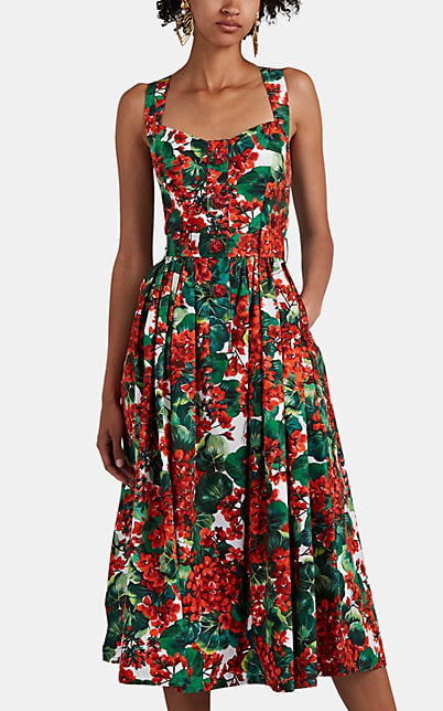 Dolce & Gabbana Pleated Floral-Print Cotton-Blend Poplin Midi Dress In Red