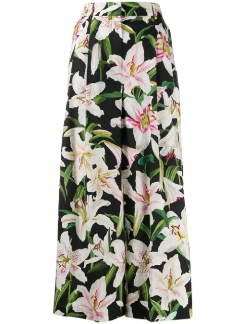 Dolce & Gabbana Lily-print High-rise Cotton Culotte Trousers In Black