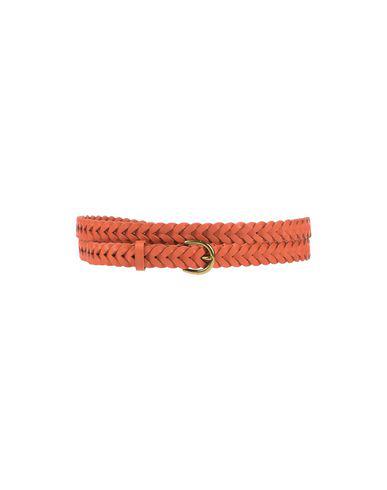 Polo Ralph Lauren Belt In Orange