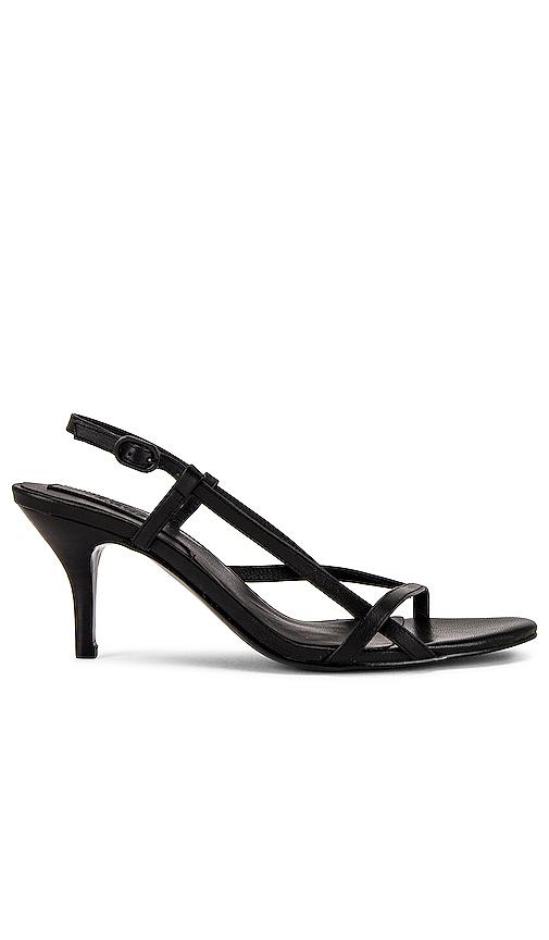 Jaggar Harness Sandal In Black