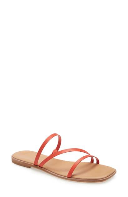 Madewell The Lyra Slide Sandal In Coastal Orange