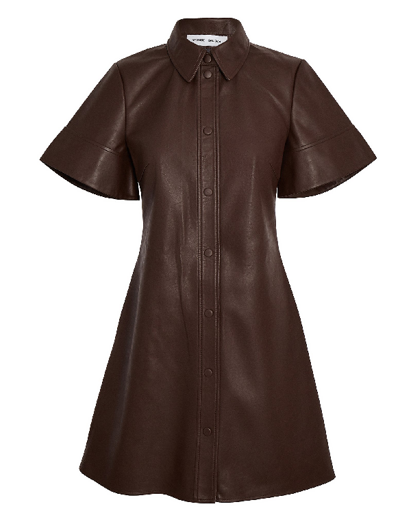 SamsØe SamsØe Shereen Vegan Leather Mini Dress In Brown