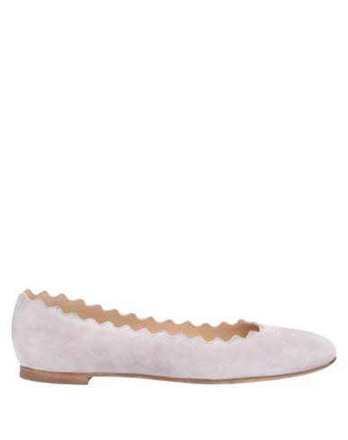 Chloé Ballet Flats In Light Grey