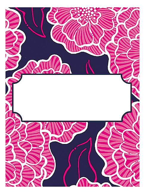 Lilly Pulitzer Cloud Nine Paper Note Cards In Pink Blue