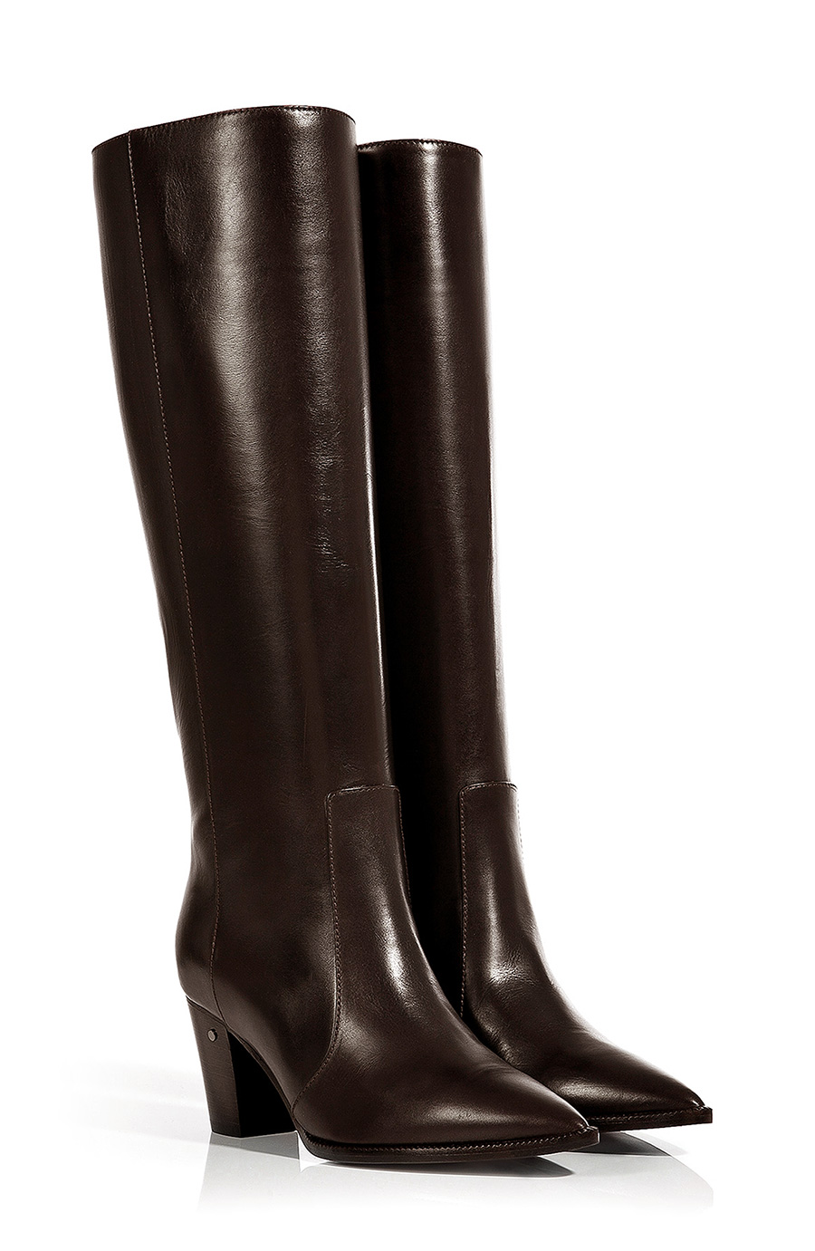 Laurence Dacade Leather Knee-high Boots In Brown