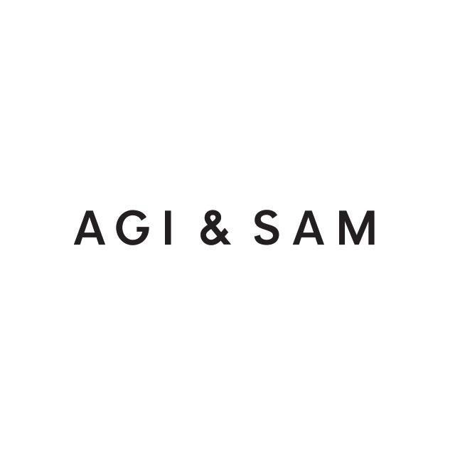 AGI & SAM