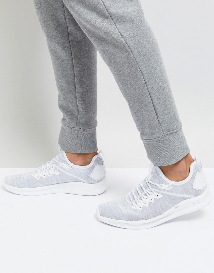 puma evoknit ignite flash