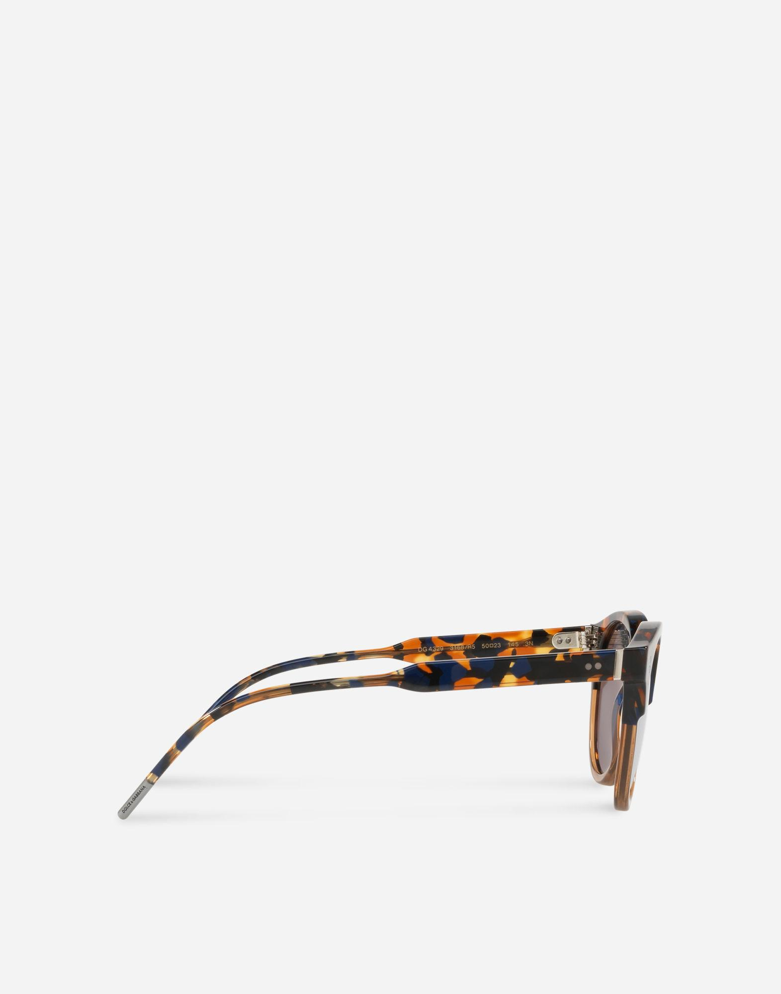 60a3ca63c95 Dolce   Gabbana Panthos Sunglasses With Keyhole Bridge In Havana Blue And  Brown