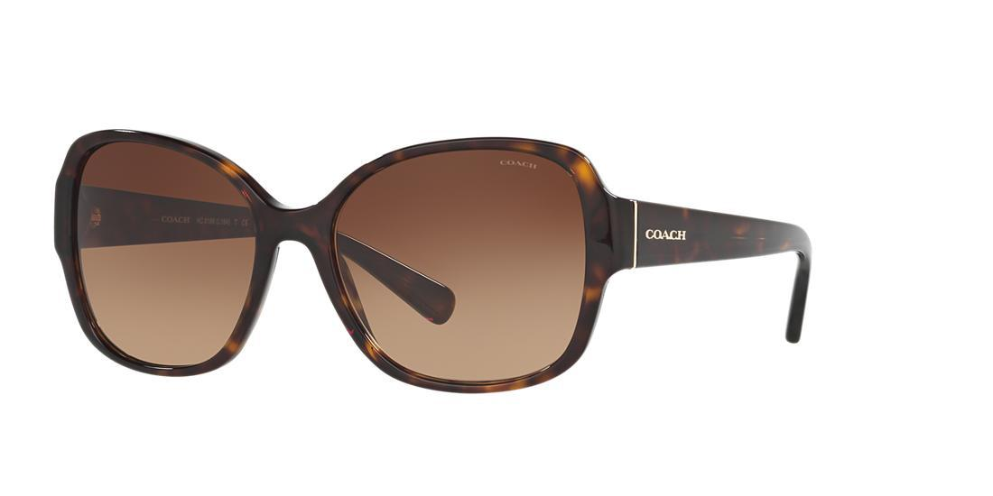 9e59a723564 Coach Butterfly Sunglasses W  Speckled Transparent Arms In Tortoise Frames Brown  Lenses