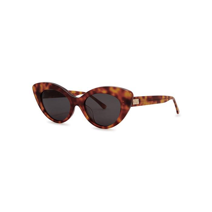 Wild The Sunglasses Modesens Cat Eyewear Eye In Gift Crap Havana EvqU4wx