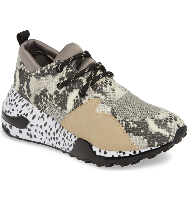 0b9f68364ad Cliff Sneaker in Natural Snake Print