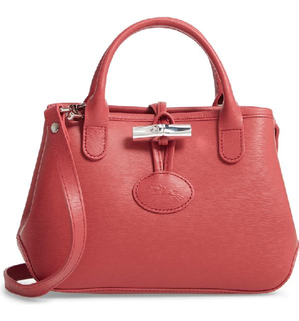 Roseau Mini Grain Leather Top-handle Crossbody Bag In Fig