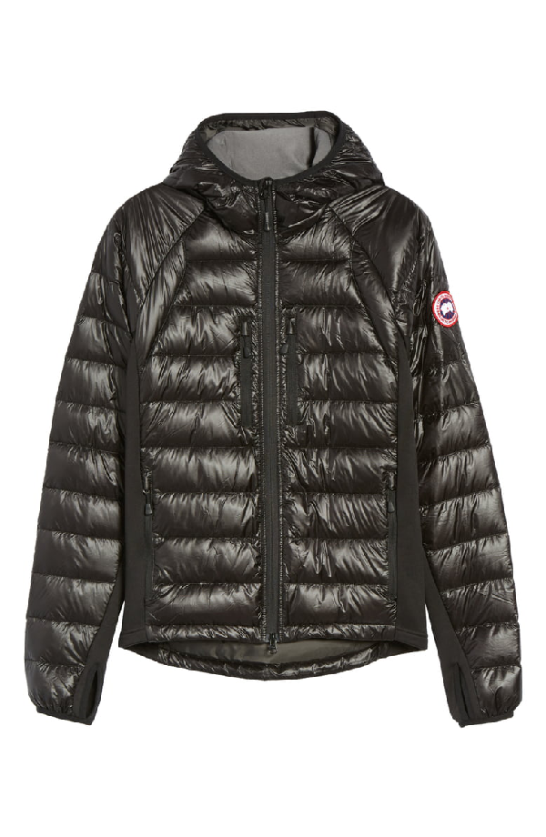 e745fcad850 Hybridge Lite Quilted Shell Jacket in Black