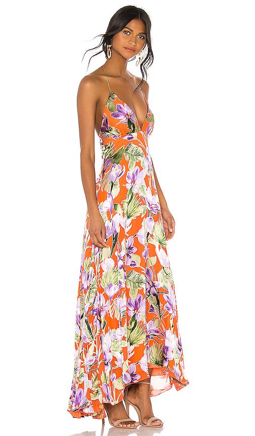 c77024ea73c9 Alice And Olivia Alice + Olivia Hetty Halter Neck Maxi Dress In Floral Palm  Coral