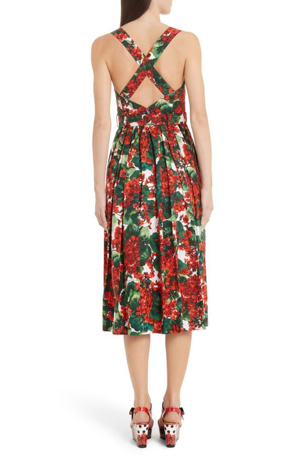 Dolce & Gabbana Pleated Floral-Print Cotton-Blend Poplin Midi Dress In Red