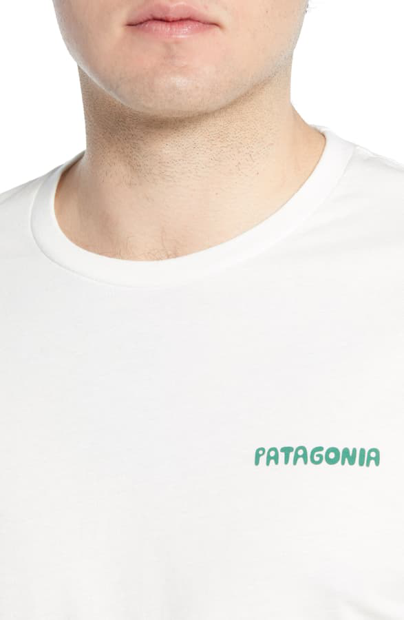 PATAGONIA STAND UP GRAPHIC ORGANIC COTTON T-SHIRT,38430