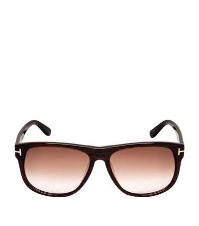 Tom Ford Olivier Plastic Sunglasses, Black/brown