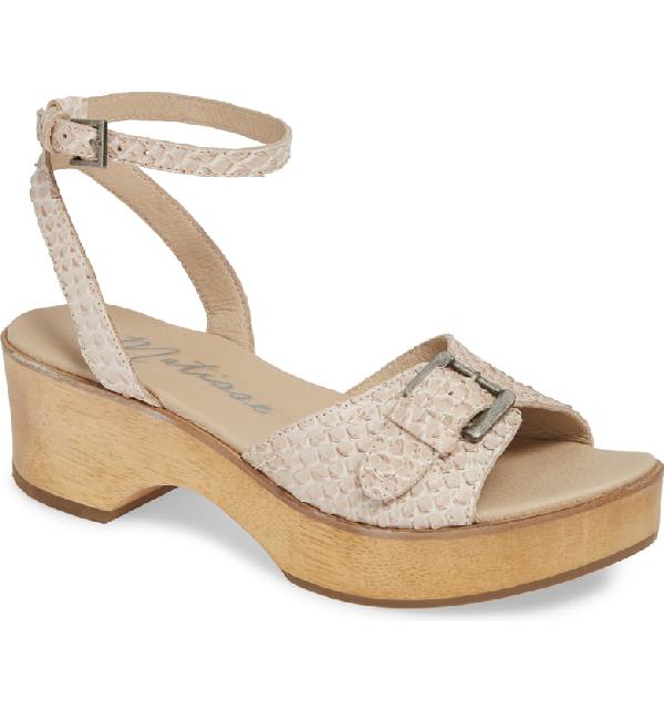 Matisse Dutch Sandal In Blush