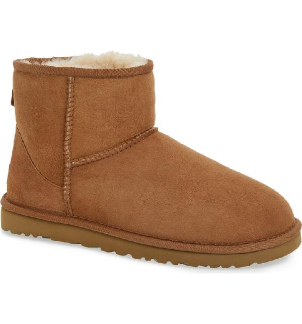 390eb3209e5 Men's Classic Mini Boots Men's Shoes in Chestnut