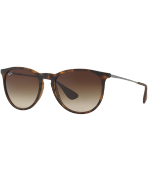 Ray Ban Ray-Ban Unisex Erica Classic Sunglasses, 54Mm In Brown/Brown