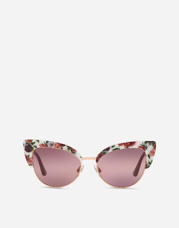 7c63b40d854a Dolce & Gabbana Floral Printed Acetate Cat-Eye Sunglasses   ModeSens
