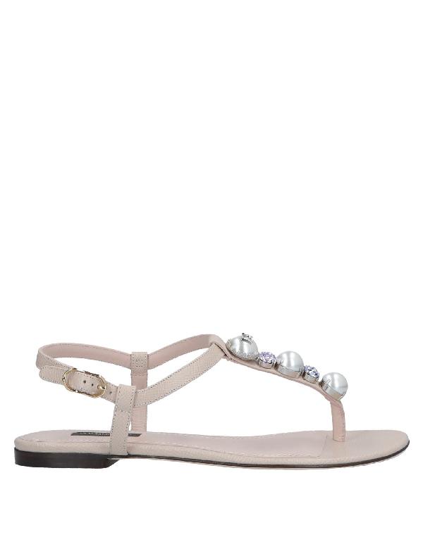 Dolce & Gabbana Flip Flops In Light Pink