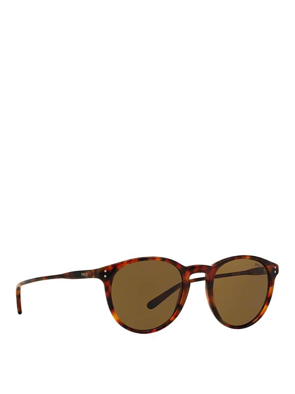 Polo Ralph Lauren Jerry Havana Panthos Sunglasses In Brown