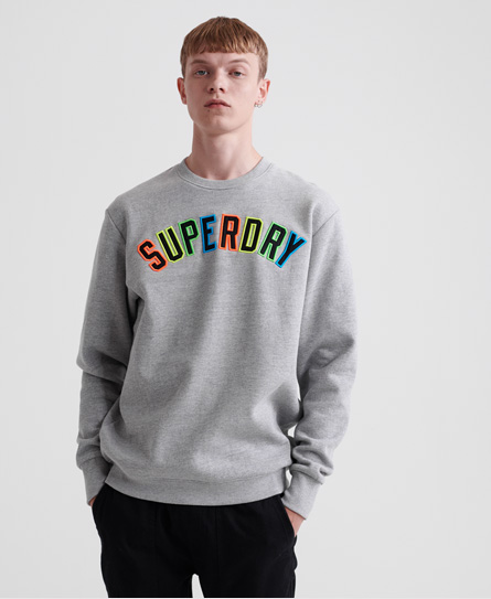 Superdry New House Rules Applique Crew Sweatshirt In Varsity Silver Grit