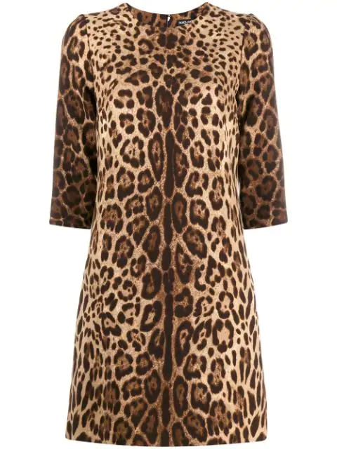 Dolce & Gabbana Leopard Print Mini Shift Dress In Hy13m Brown