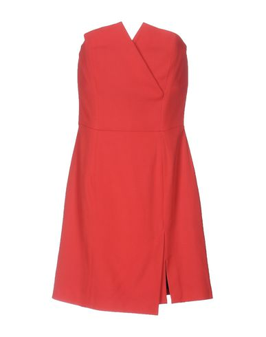 Pinko In Coral