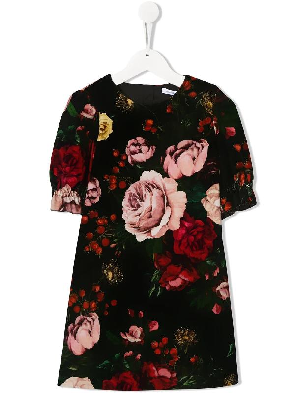 Dolce & Gabbana Kids' Floral Print Stretch Velvet Dress In Black