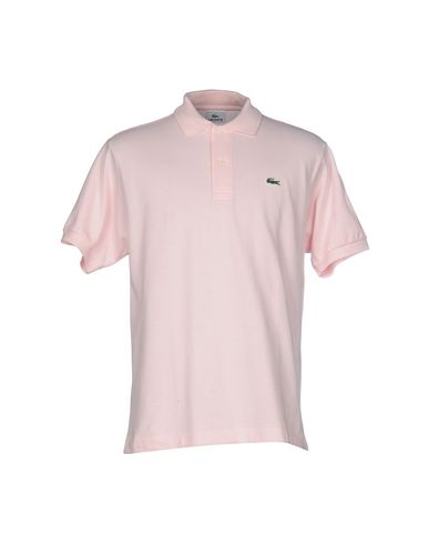 Lacoste Polo Shirts In Light Pink