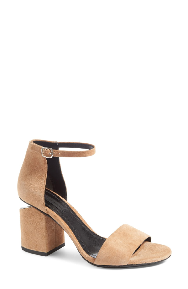 Alexander Wang 'Abby' Ankle Strap Sandal In Clay
