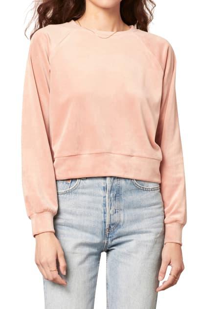 Cupcakes And Cashmere Elio Velour Sweatshirt In Ballet Pink
