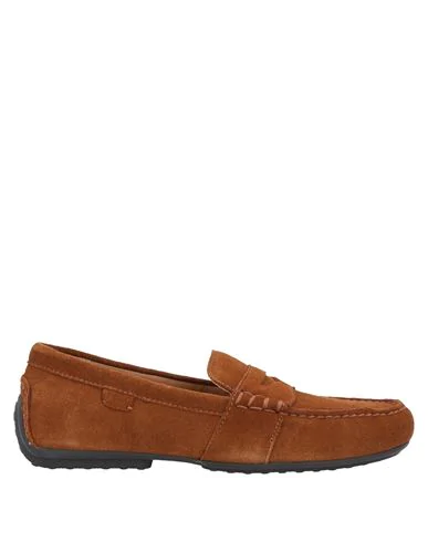 Polo Ralph Lauren Loafers In Brown
