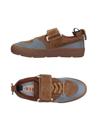 Msgm Sneakers In Camel