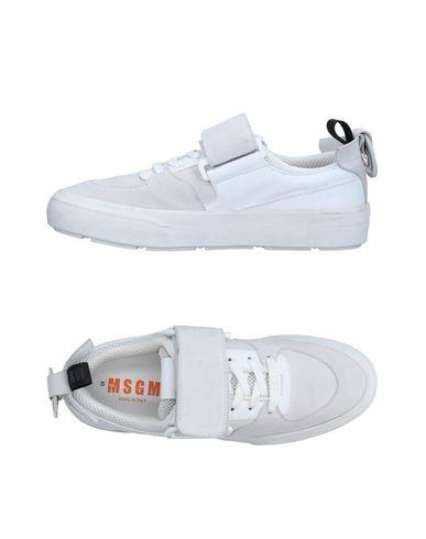 Msgm Sneakers In White