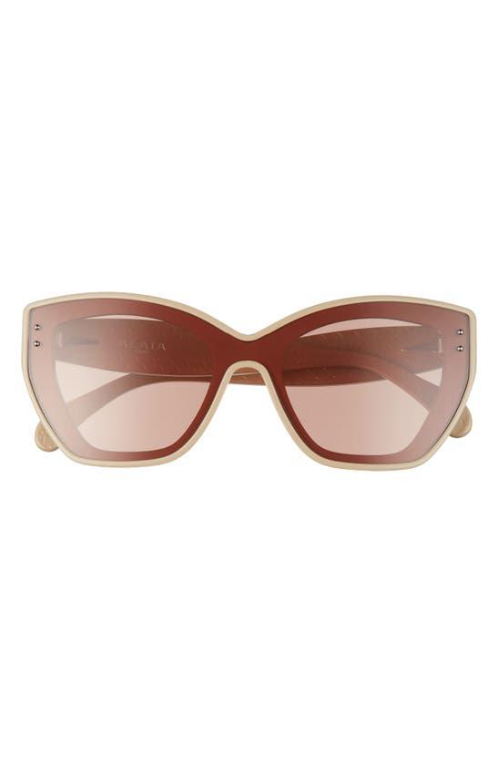 Alaïa 99mm Cat Eye Sunglasses In Beige/ Brown
