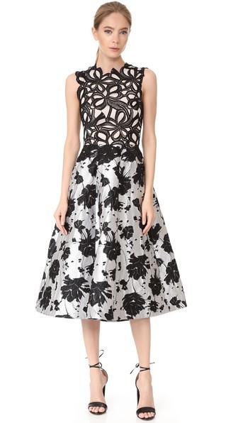 Monique Lhuillier Lace & Jacquard Tea Length Dress In Noir/silk White