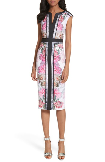 Ted Baker Shawnie Painted Posie Fitted Midi Dress In Baby Pink