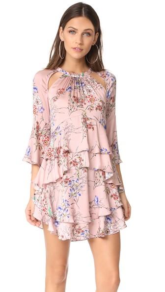 Marissa Webb Emmeline Print Dress In Primrose Floral