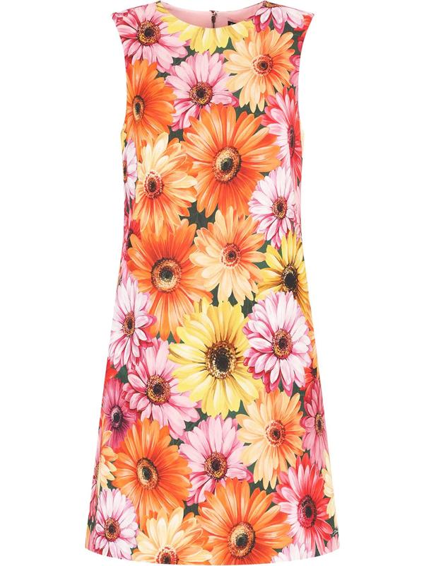 Dolce & Gabbana Short Cady A-line Dress With Gerbera-daisy Print In Multiprint