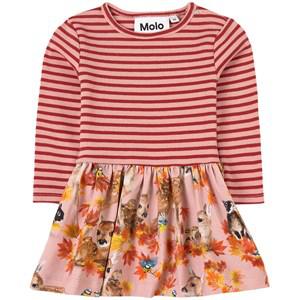Molo Babies' Kids Dress Carel For Girls In Orange