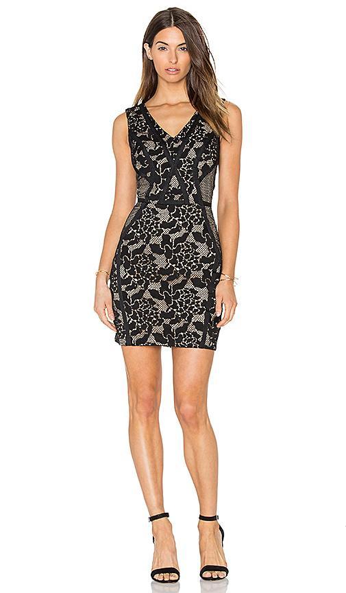 Greylin Sueann Lace Mix Dress In Black