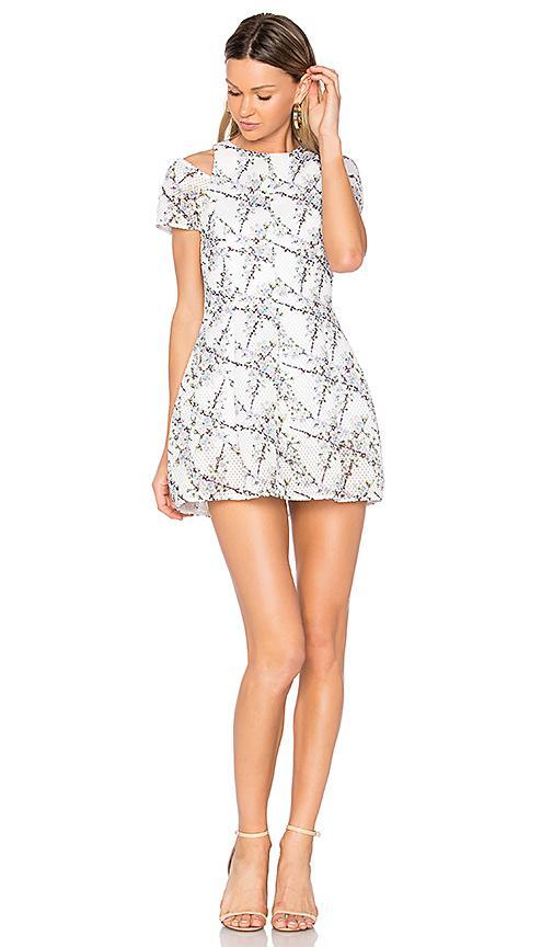 Elliatt Euphoria Cold Shoulder Dress In Blossom Print