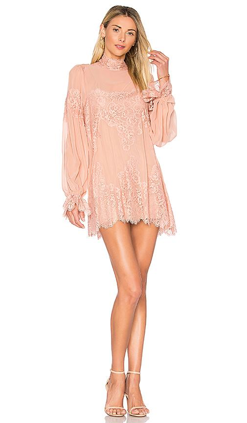 Hot As Hell Queen For A Day Dress In Rose
