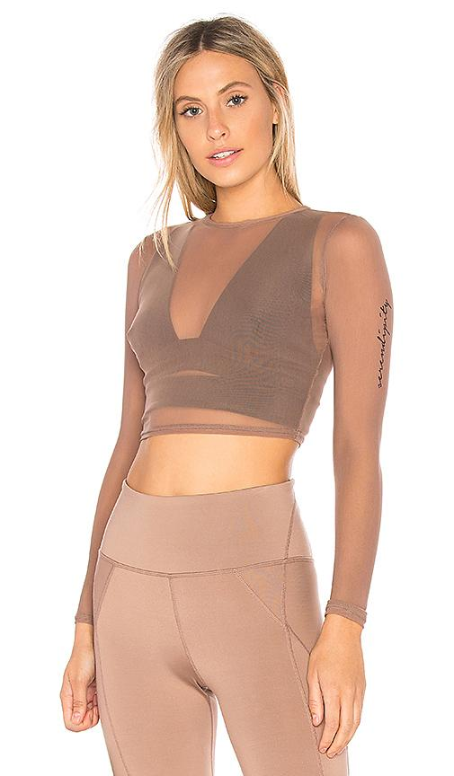 Free People Barre Mesh Top In Taupe