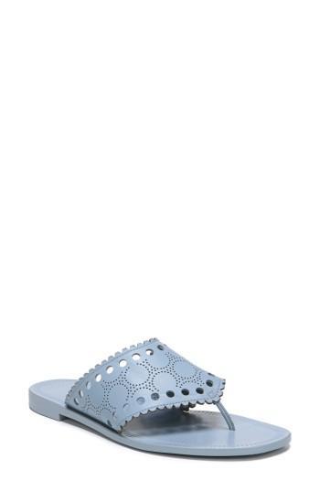 Diane Von Furstenberg Ekati Thong Sandal, Slate Blue