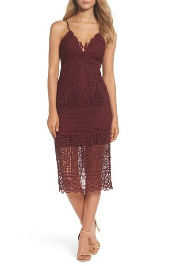 Bardot Versailles Lace Pencil Dress In Burgundy