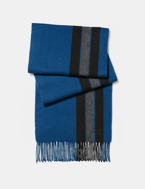 Coach Varsity Stripe Scarf - Men's In Denim/charcoal